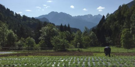 """Concetto per lo sviluppo del paesaggio – battere nuove strade per conservare e sviluppare il territorio e il paesaggio"" – ""Landschafts-entwicklungskonzept – Neue Wege zur Erhaltung und Entwicklung des Natur – und Kulturlandschaftsraums"""